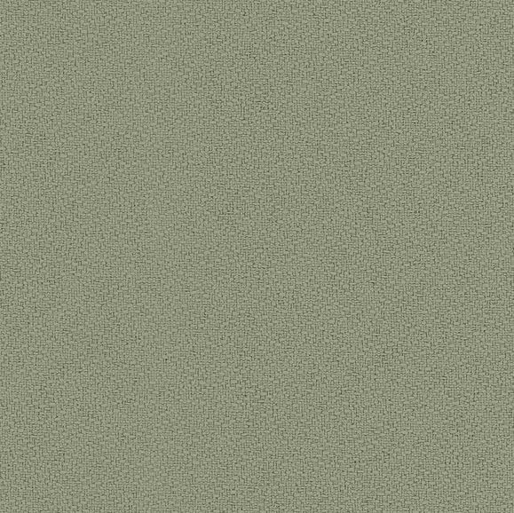 anchorage-eucalyptus
